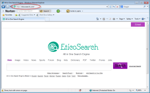 eticosearch.com-homepage-image