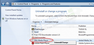 Blitz Media Player removal