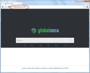 Globalseca.com Homepage Image