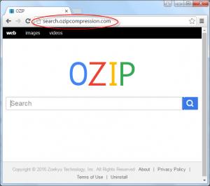 Search.ozipcompression.com Homepage Image