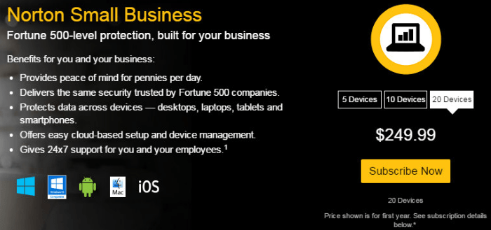 Norton Small Business Security