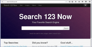 Search123now.net Homepage Image