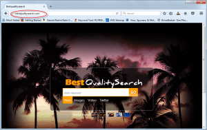 bestqualitysearch-com-homepage-image