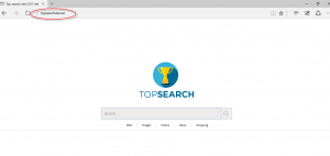 TopSearchSite.net Homepage Image
