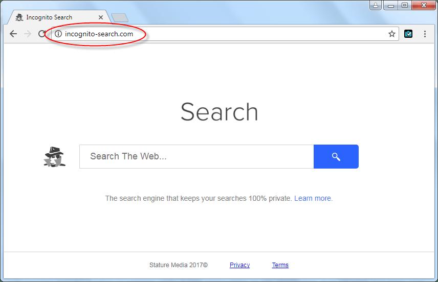 Incognito-search.com Homepage Image