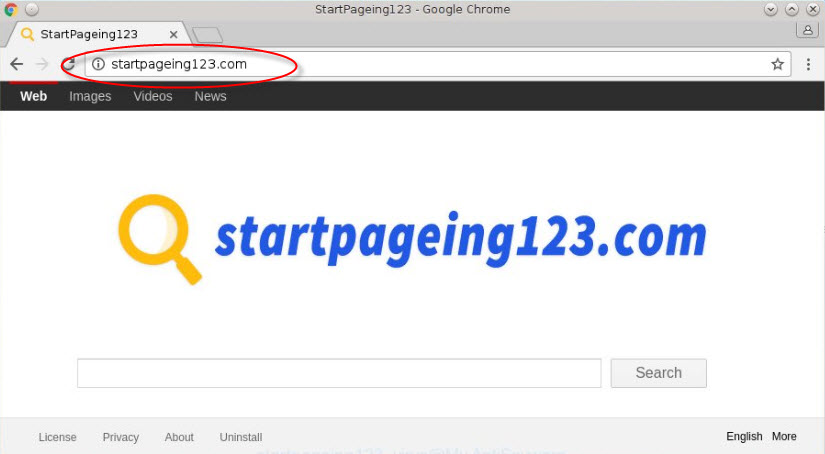 remove startpageing123.com