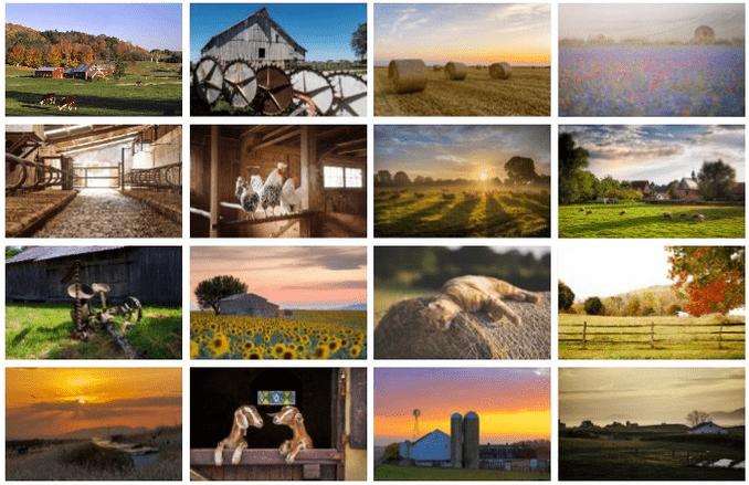 day-on-the-farm-theme