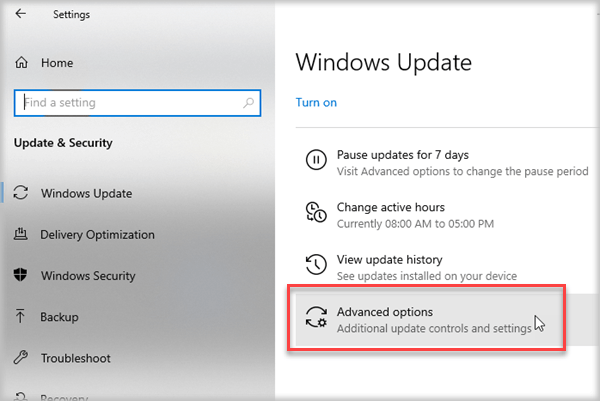 Advanced Option of Windows Update