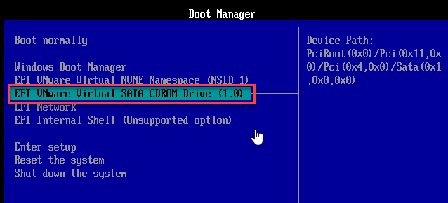 set first boot as a cd